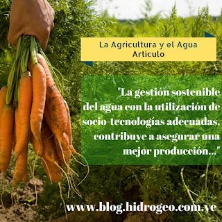 La Agricultura y el Agua