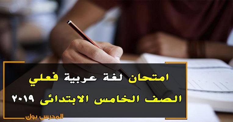 امتحانات خامسة ابتدائي 2019 فعلية حمل امتحان اللغة العربية الصف الخامس الابتدائي من هنا
