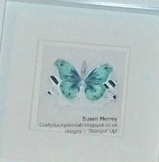Bold Butterfly Framelits, Butterflies Thinlets, Craftyduckydoodah!, Stampin' Up! Made by Susan Simpson (Merrey) Independent Stampin' Up! Demonstrator, Watercolour Wings, Butterflies Thinlets,