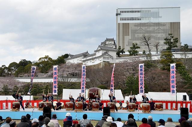 Ohanami Taiko (Japanese Drum) at Himeji Catsle, Hyogo