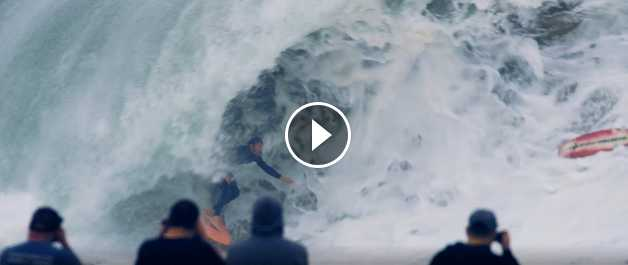 THE WEDGE Spring 2018