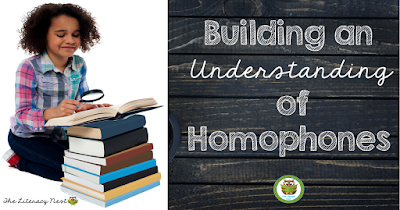 ideas for teaching homophones and homonyms