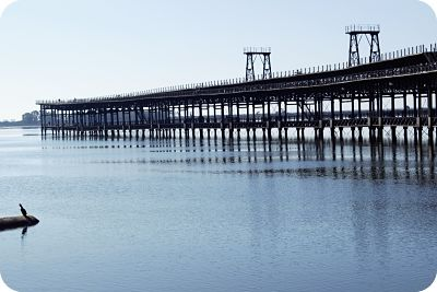 muelle_tinto