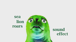 learn sea lion sounds