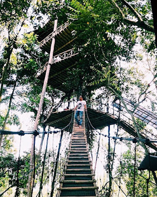 Rute Dan Lokasi Rumah Pohon temega Karangasem Bali