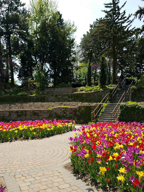 photos of spring flowers at sunken gardens