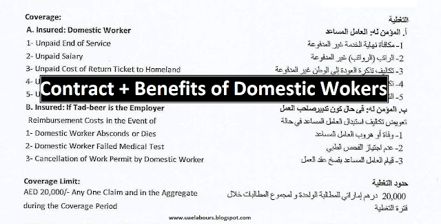 Rights of UAE Domestic workers, Domestic workers contract copy