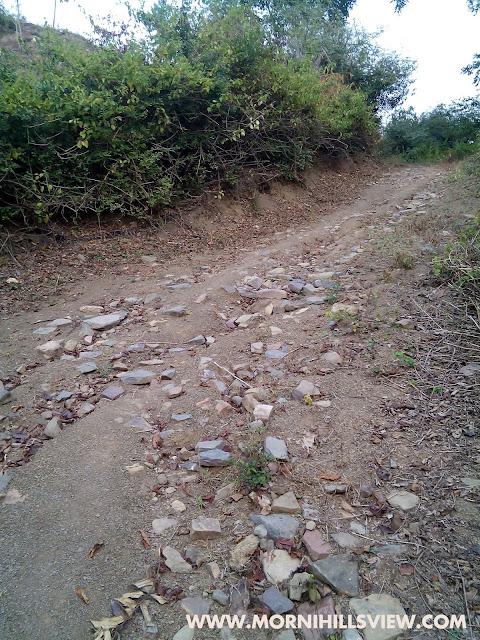 Morni hills | Bani Temple in Morni Hills | Maa Bhaddar Kali temple