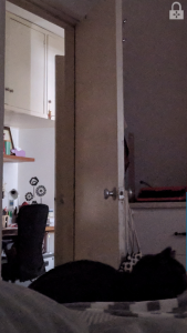 Google Camera HDR+ Untuk MIDO