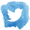 icône twitter maya joys