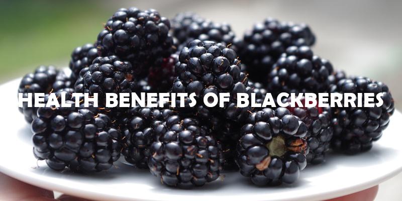 Health Benefits of Blackberries