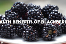 Health Benefits of Blackberries That You Need to Know