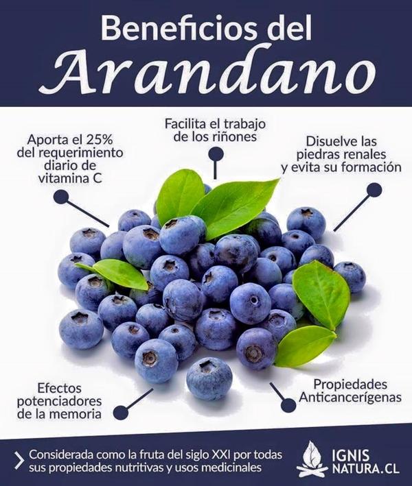 Beneficios del arandano