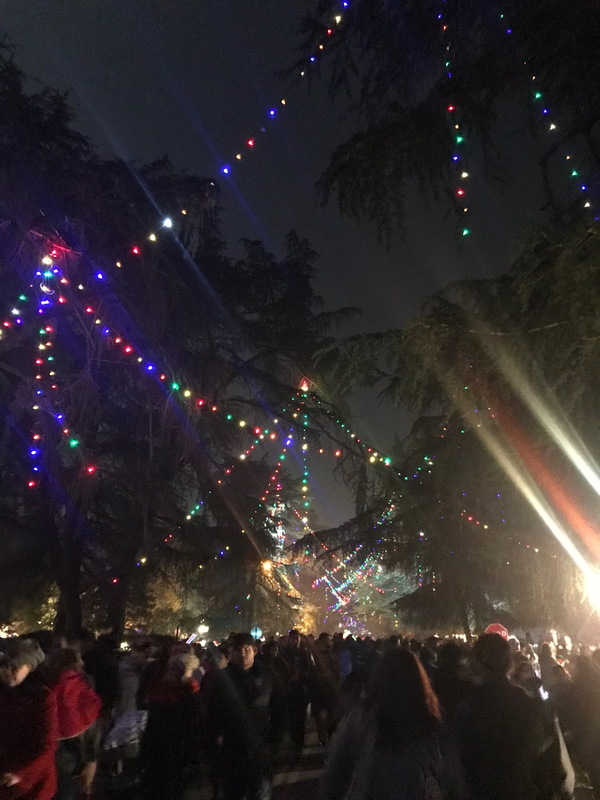 north van ness would have been in an extremely remote northern part of fresno when the christmas tree lane tradition began in the 1920s as evidenced by its