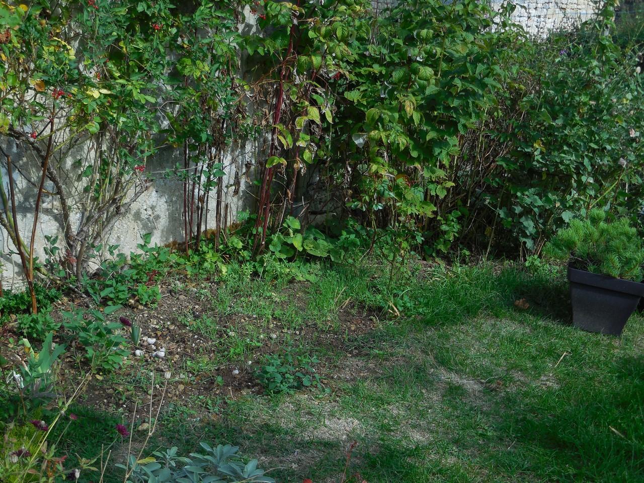 Cagouille 39 s garden botanic la griffe de jardin - Griffe de jardin ...