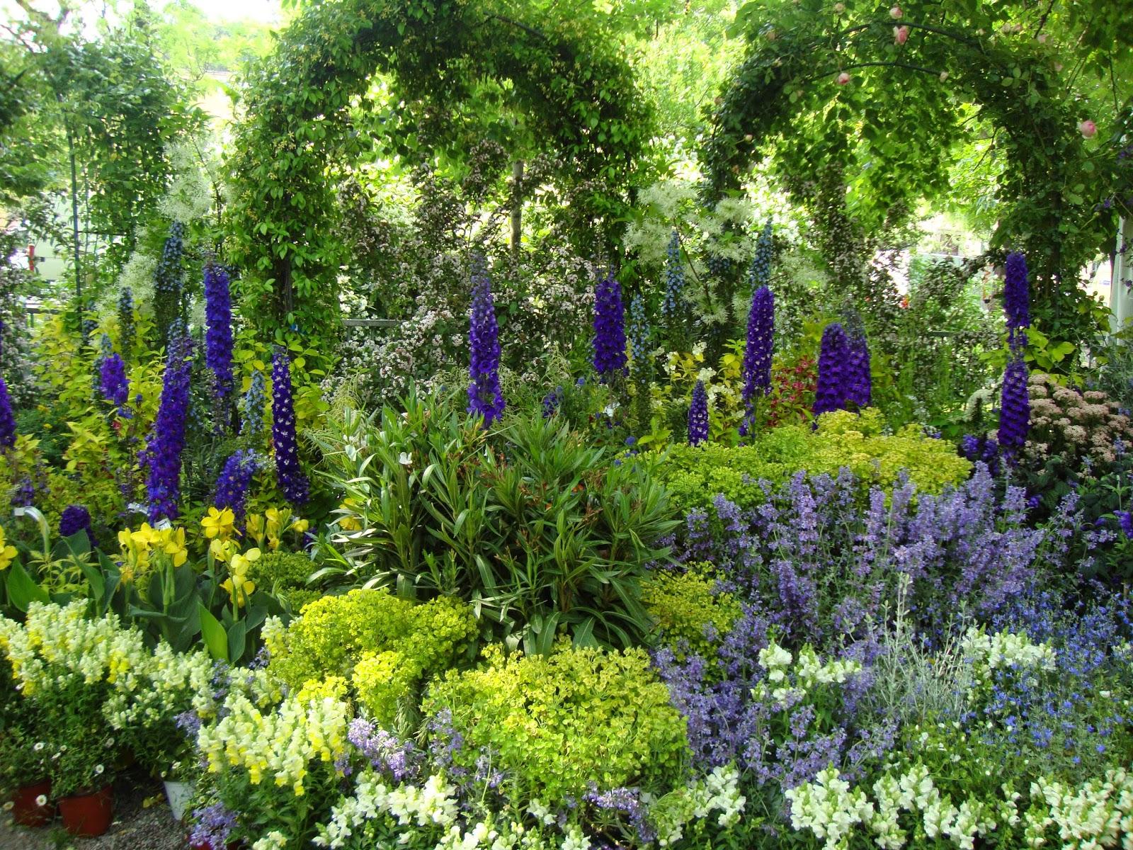 Foto diario di una giardiniera curiosa immagini da for Immagini giardiniere