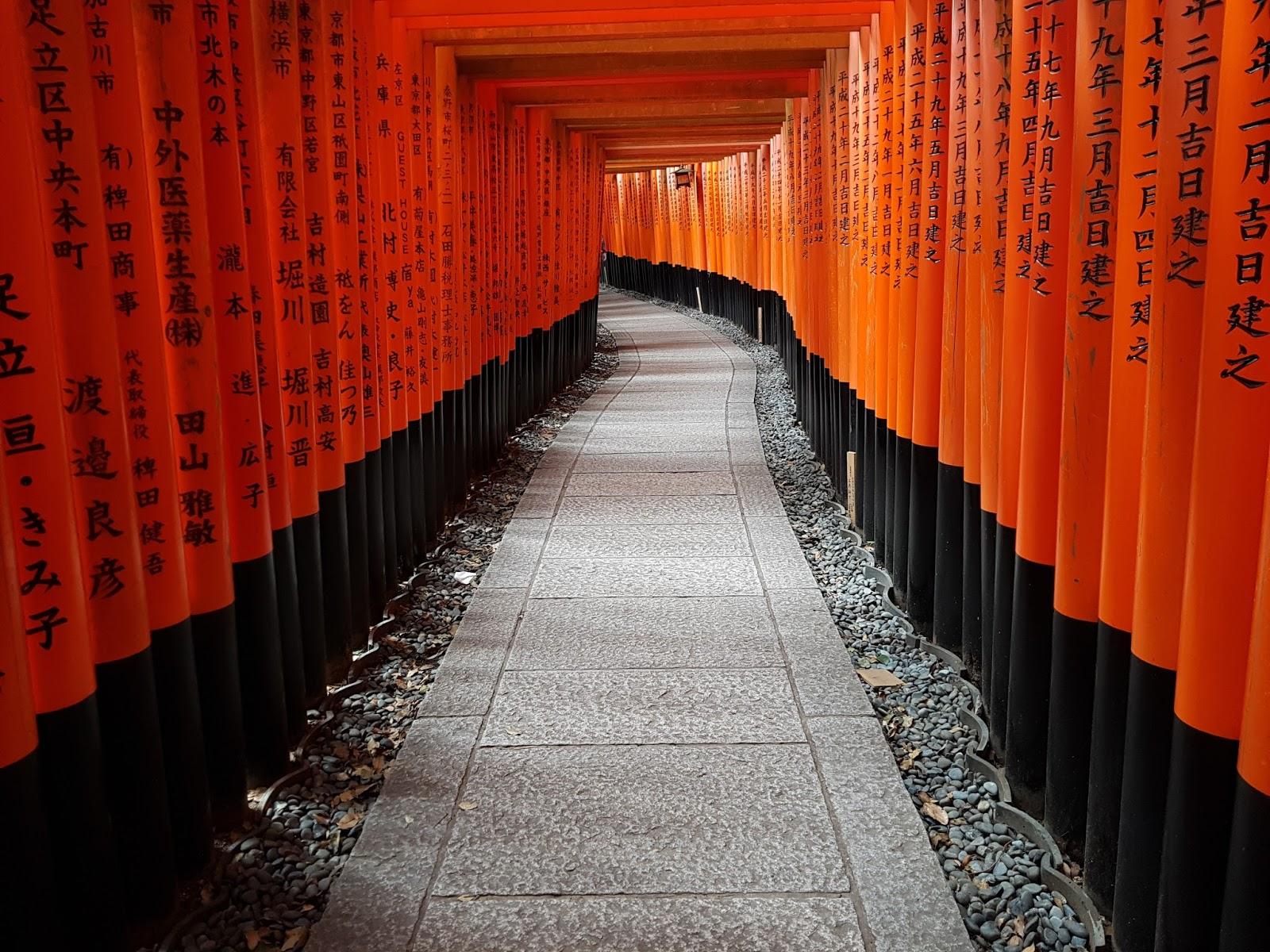 Fushimi Inari Red Torii Empty