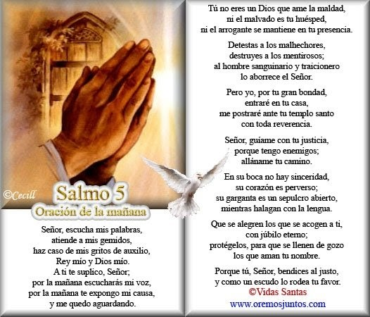 Complee Salmo 27 Biblia Catolica Related Keywords Suggestions
