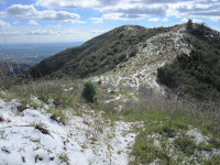 View south toward Glendora Mountain (3322'), Angeles National Forest