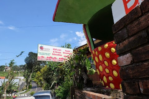 Pondok Strawberry, Pacet - Mojokerto