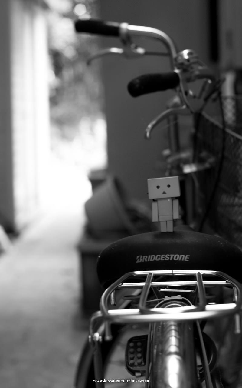 ダンボーさんの写真例 EOS 40D EF 50mm F 1.8 Ⅱ