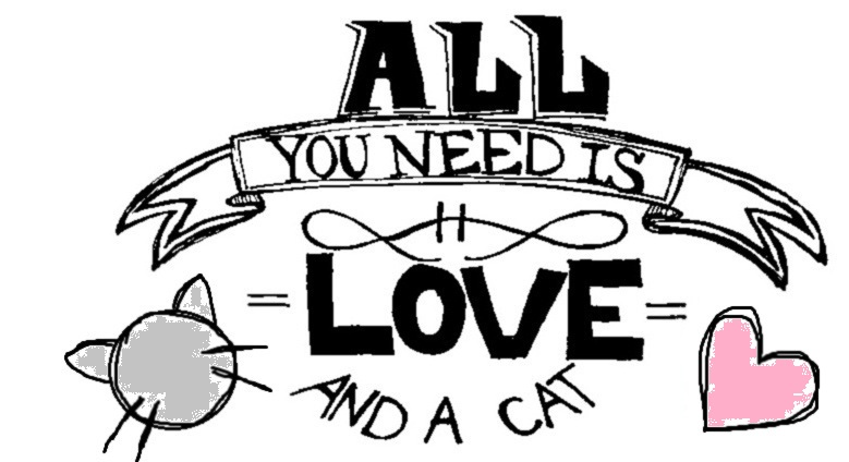 Download All You Need Is Love And A Cat