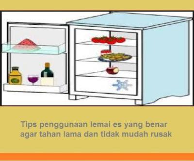 Tips penggunaan lemai es yang benar agar tahan lama dan tidak mudah rusak