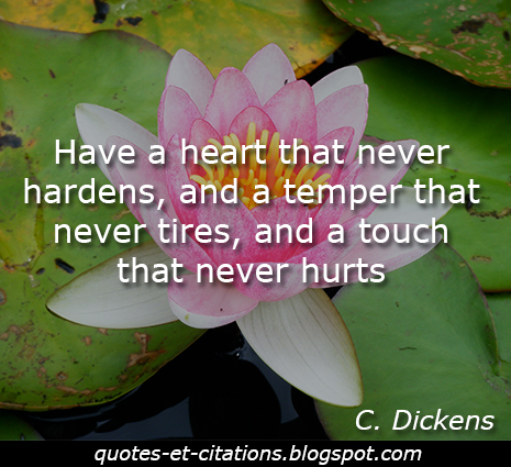 citation un coeur qui ne s'endurcit pas