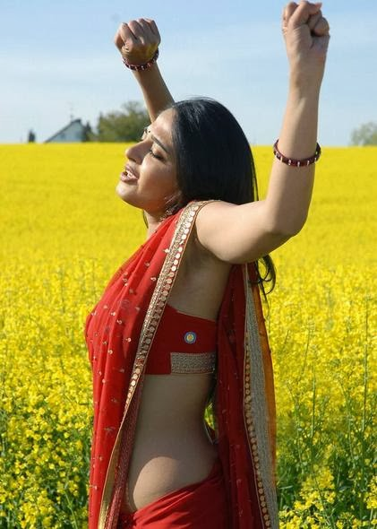 anushka-shetty-movie-song-scene
