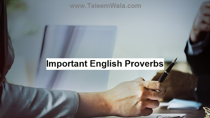 50 Important English Proverbs and Sayings for BA, MA and CSS Exams