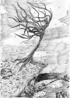 Drzewo na klifie