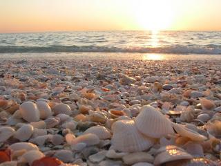 Κοχύλι εγώ, καλέ μου, βότσαλο εσύ   στης θάλασσας τα κύματα.