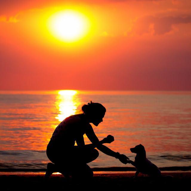 как открыть для себя любовь окружающего мира