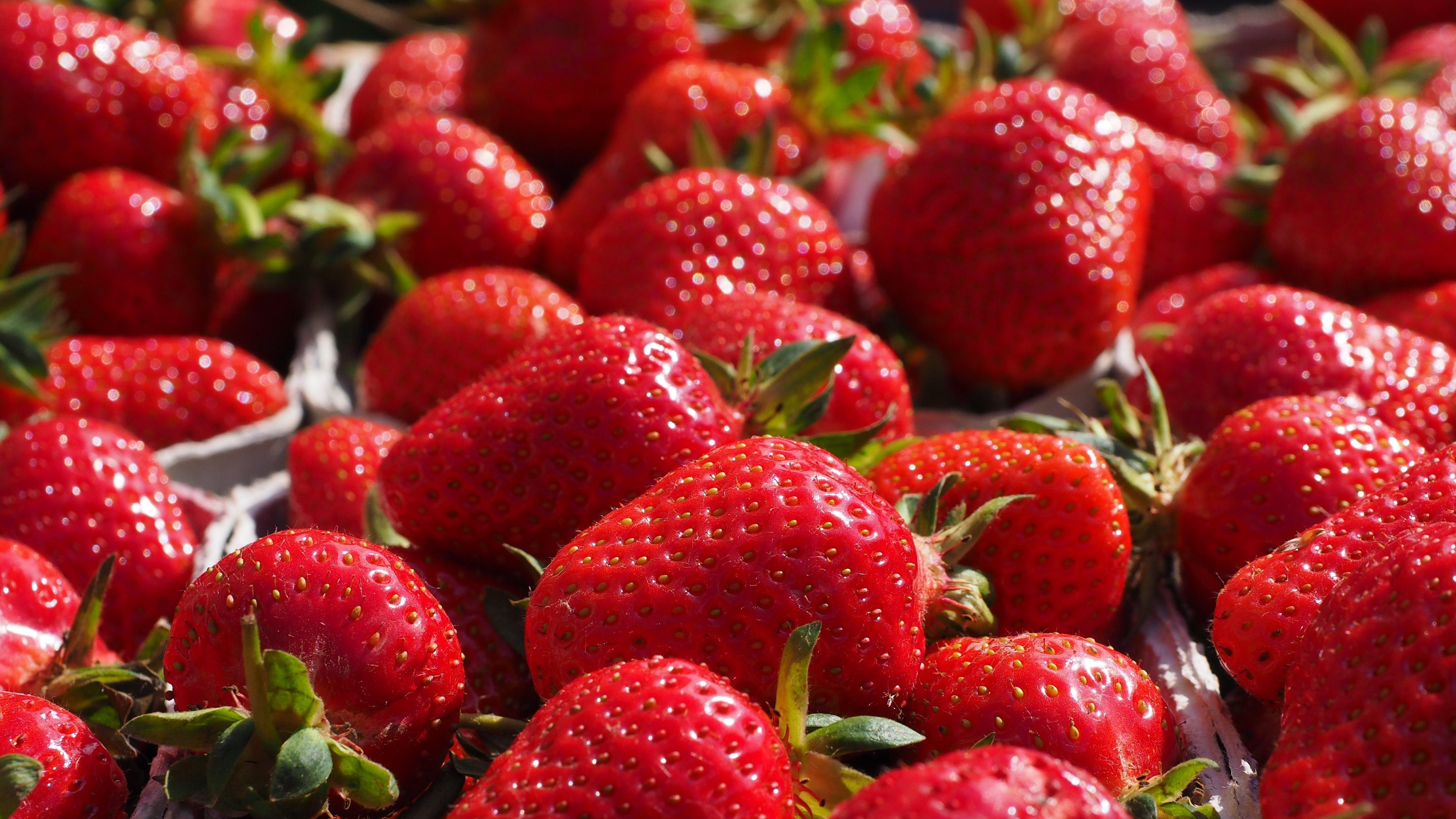 Wallpaper: Fresh Strawberries