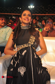 Rakul Preet Singh at Sarrainodu Success Celebrations