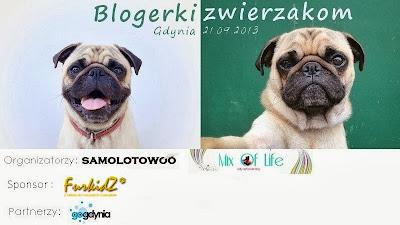 Blogerki zwierzakom - to dopiero było spotkanie!