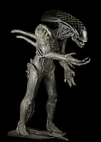 http://alienexplorations.blogspot.co.uk/2004/09/alien-vs-predator-full-sized-grid-alien.html