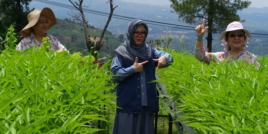 Mba Tutut: Perbedaan Memperkaya Indonesia Kita