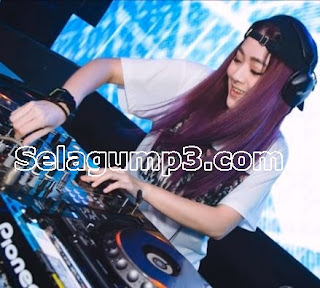 Download Lagu DJ Remix Pop Paling keren Full Album Mp3 Terbaik 2018