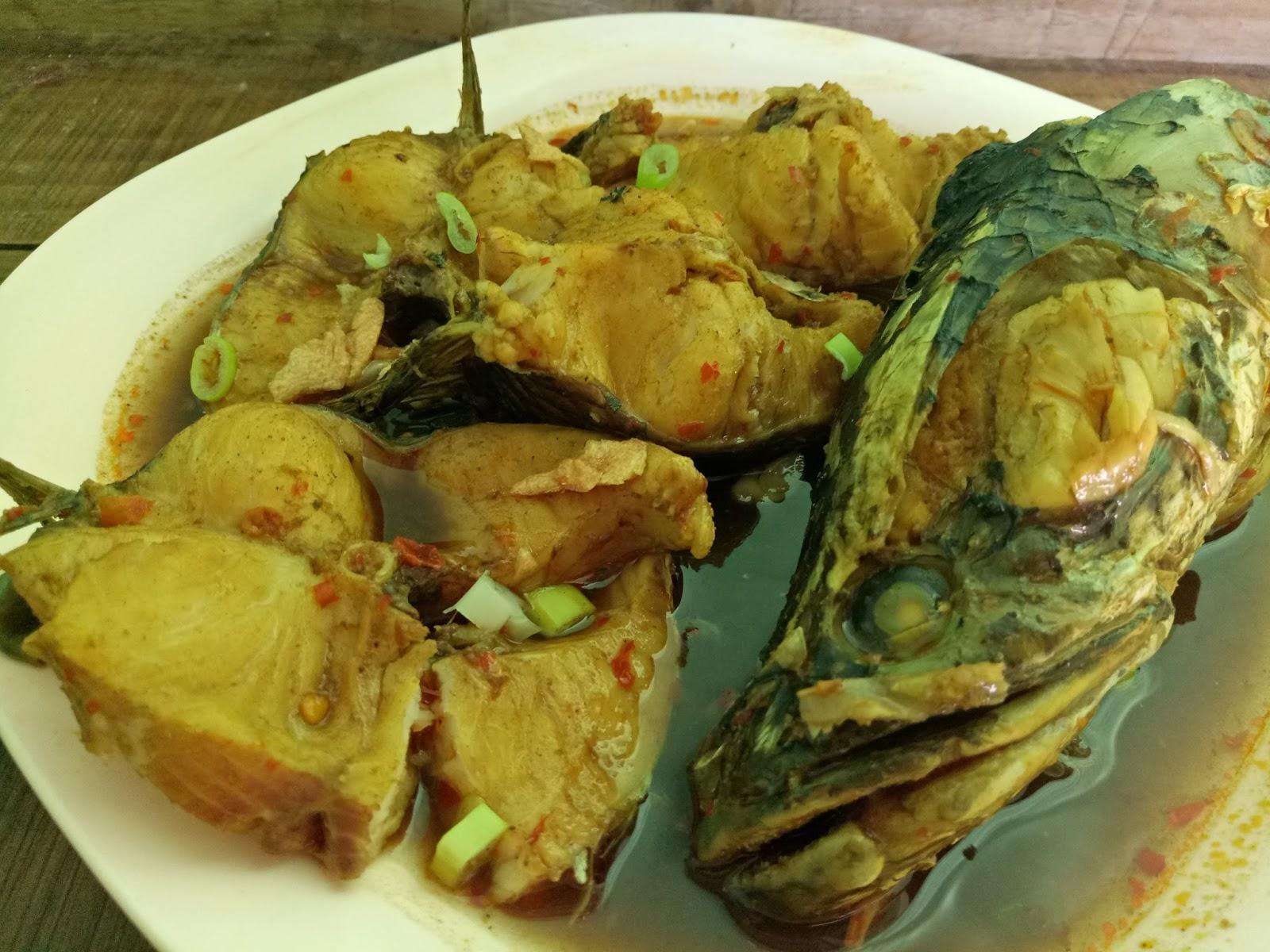 Resep Dan Cara Membuat Masakan Ikan Gabus Kuah Kuning Yang Enak Nikmat Dan Sederhana Selerasa Com