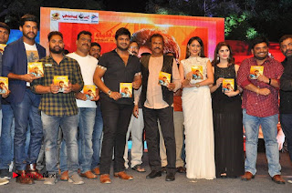 turodu Telugu Movie Audio Launch Stills  0023.jpg