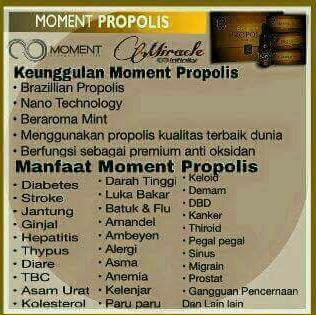 Manfaat Moment Propolis