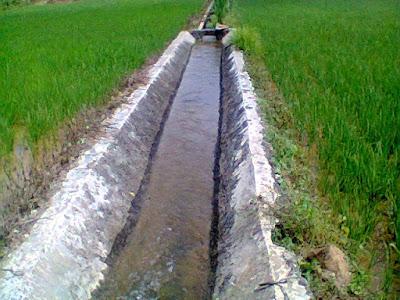 Manfaat Irigasi Untuk Pertanian