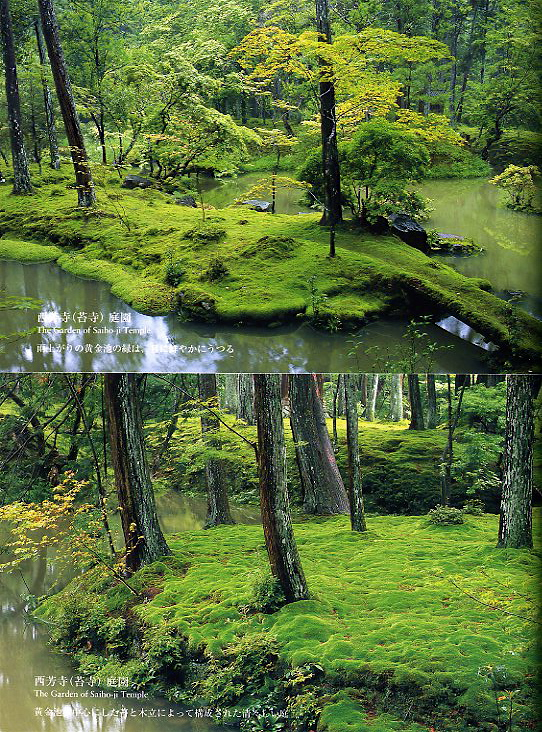 Seattle Urban Landscape: Bloedel Reserve: The Moss Garden