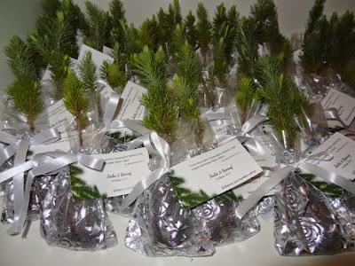 nikah fidanı nikah bitkisi fiyatları 2