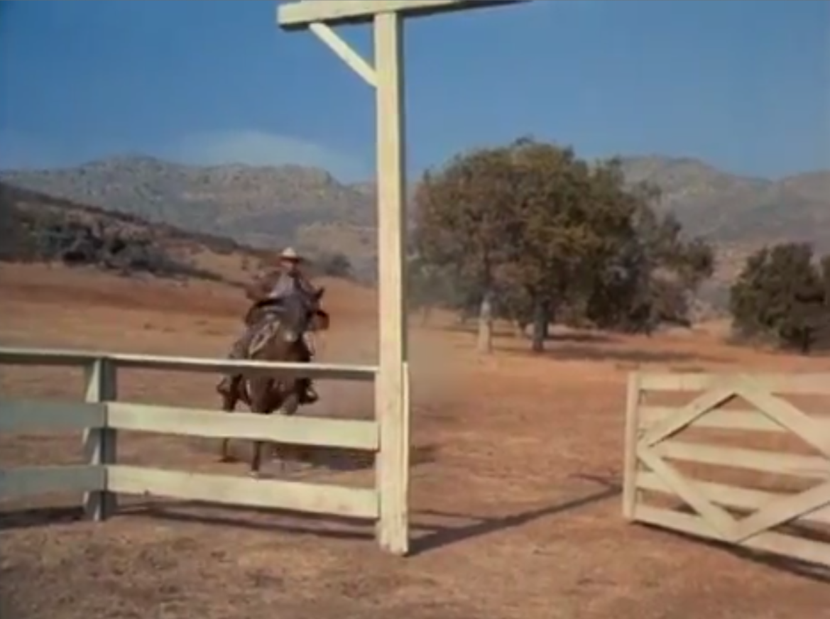 Big Valley, The (1965)