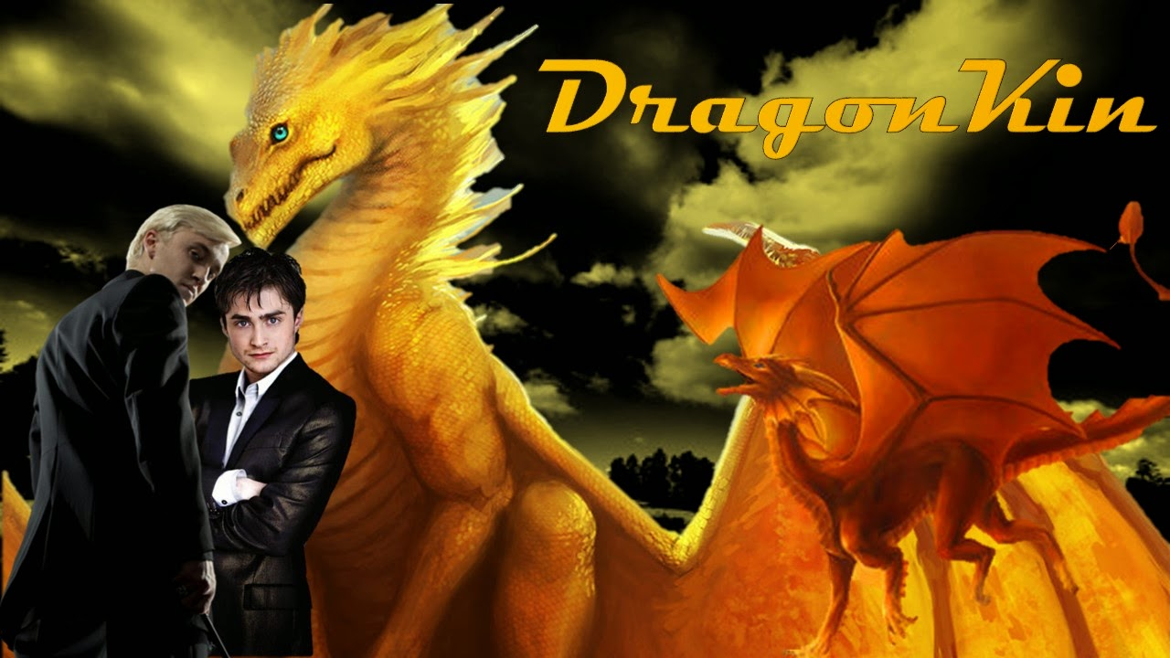 Fanfiction Worth Re-reading: DragonKin (Harry And Draco