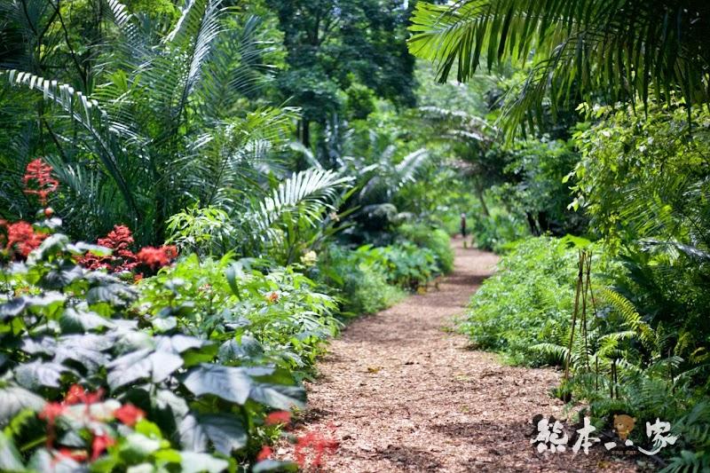偶像劇「薰衣草」場景|花坊、蝴蝶生態區步道|飛牛牧場~唯美自然系IG景點