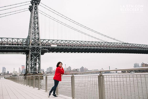miradores de Nueva York domino park