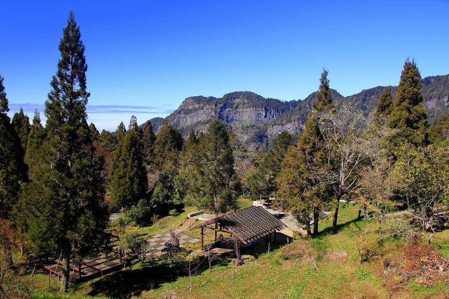 阿里山國家森林遊樂區 - 第二停車場 - 車宿野營 :: 阿舍的精彩生活